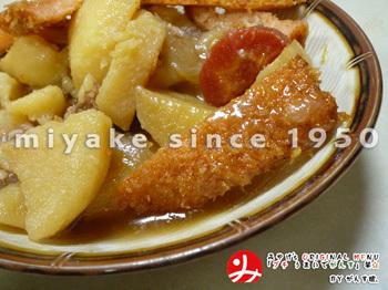 がんすIN肉じゃが005(515).jpg